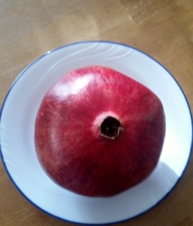 Pomegranate 1 (3)